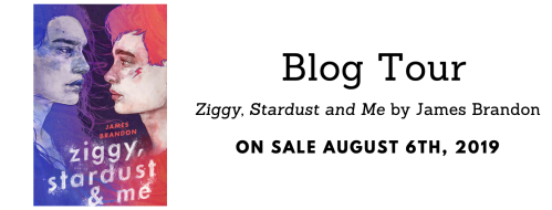 ziggystardustandmeblogtour